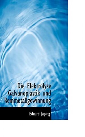 Elektrolyse Galvanoplastik Und Reinmetallgewinnung