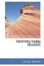 Electricity Supply Accounts