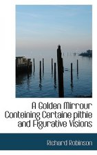 Golden Mirrour Conteining Certaine Pithie and Figurative Visions