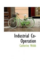 Industrial Co-Operation