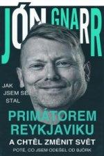 Jak jsem se stal primátorem Reykjavíku a chtěl změnit svět