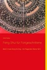 Feng Shui für Fortgeschrittene. Bd.3/2