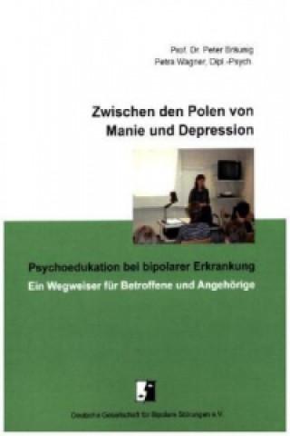 Zwischen den Polen von Manie und Depression