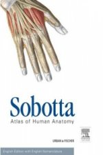Sobotta Atlas of Human Anatomy, Package, 15th ed., English
