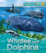 US Explorers: Whales and Dolphins