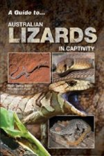 Guide to Australian Lizards in Captivity