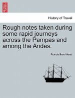 Rough Notes Taken During Some Rapid Journeys Across the Pampas and Among the Andes.
