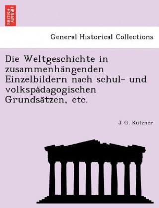 Weltgeschichte in Zusammenha Ngenden Einzelbildern Nach Schul- Und Volkspa Dagogischen Grundsa Tzen, Etc.