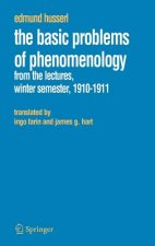 Basic Problems of Phenomenology