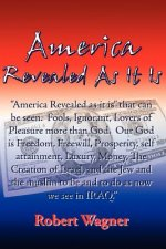 America Revealed As It Is