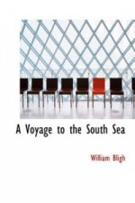 Voyage to the South Sea