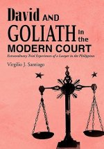 David and Goliath in the Modern Court