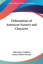 Delineations Of American Scenery And Character