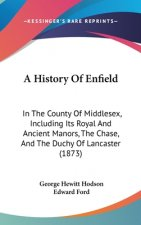 A History Of Enfield: In The County Of Middlesex, Including Its Royal And Ancient Manors, The Chase, And The Duchy Of Lancaster (1873)