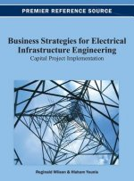 Business Strategies for Electrical Infrastructure Engineering