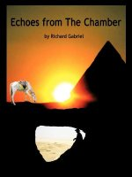 Echoes from the Chamber