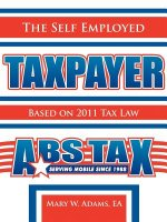 Self Employed Taxpayer