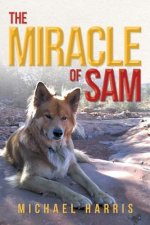 Miracle of Sam