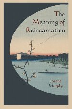 Meaning of Reincarnation