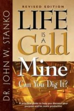 Life Is A Gold Mine-Can You Dig It?