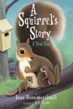 Squirrel's Story
