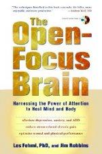 Open-Focus Brain