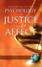 Advances in the Psychology of Justice and Affect