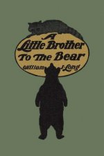 Little Brother to the Bear