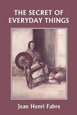 Secret of Everyday Things (Yesterday's Classics)