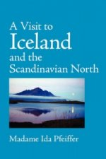 Visit to Iceland, Large-Print Edition