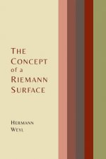Concept of a Riemann Surface