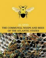 Communal Bees and Wasps of the Atlantic States (Maine to Georgia)