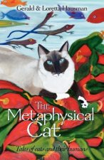 Metaphysical Cat