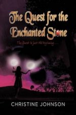 Quest for the Enchanted Stone