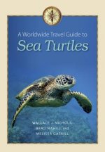 Worldwide Travel Guide to Sea Turtles