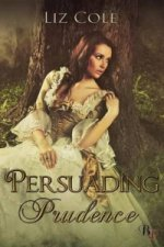 Persuading Prudence