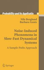 Noise-induced Phenomena in Slow-fast Dynamical Systems