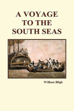 Voyage to the South Seas (Hardback)