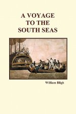 Voyage to the South Seas (Paperback)