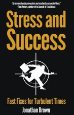 Stress and Success - Fast Fixes for Turbulent Times