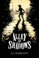 Alley of Shadows