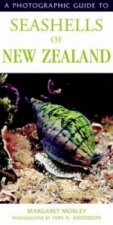 Photographic Guide to Seashells of New Zealand