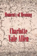 Moments of Meaning