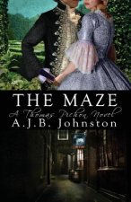 Maze, a Thomas Pichon Novel