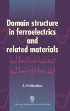 Domain Structure in Ferroelectrics and Related Materials