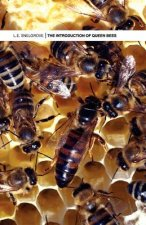 Introduction of Queen Bees