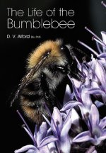 Life of the Bumblebee