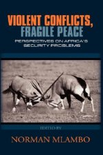 Violent Conflicts, Fragile Peace