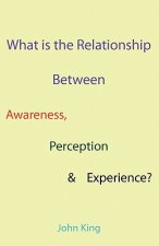 What is the Relationship Between Awareness, Perception & Experience?