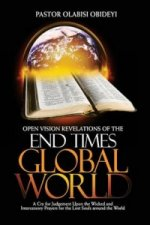 Open Vision Revelations of the End Times Global World a Cry for Judgement Upon the Wicked and Intercessory Prayers for the Lost Souls Around the World